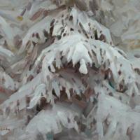 Sculptures of Winter
